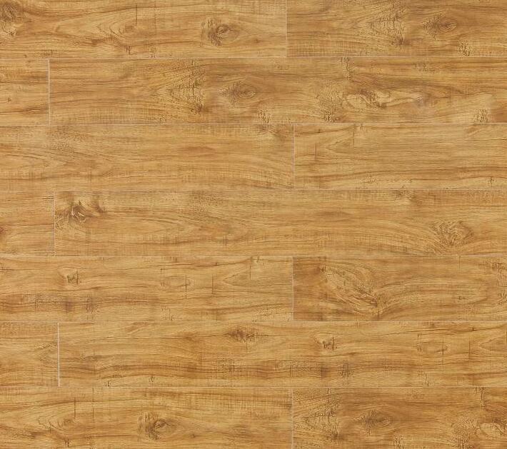 强化地板,美居系列,B8665温索尔橡木