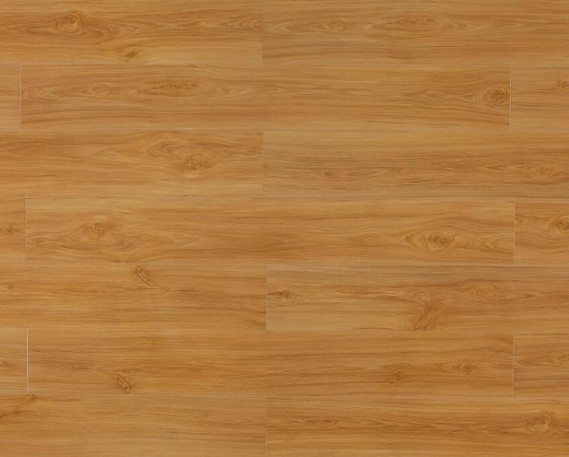 强化地板,美居系列,B8666澳洲黄橡