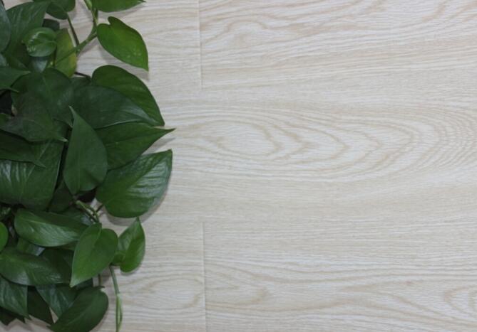 强化地板,美居系列,B8667夏日白橡