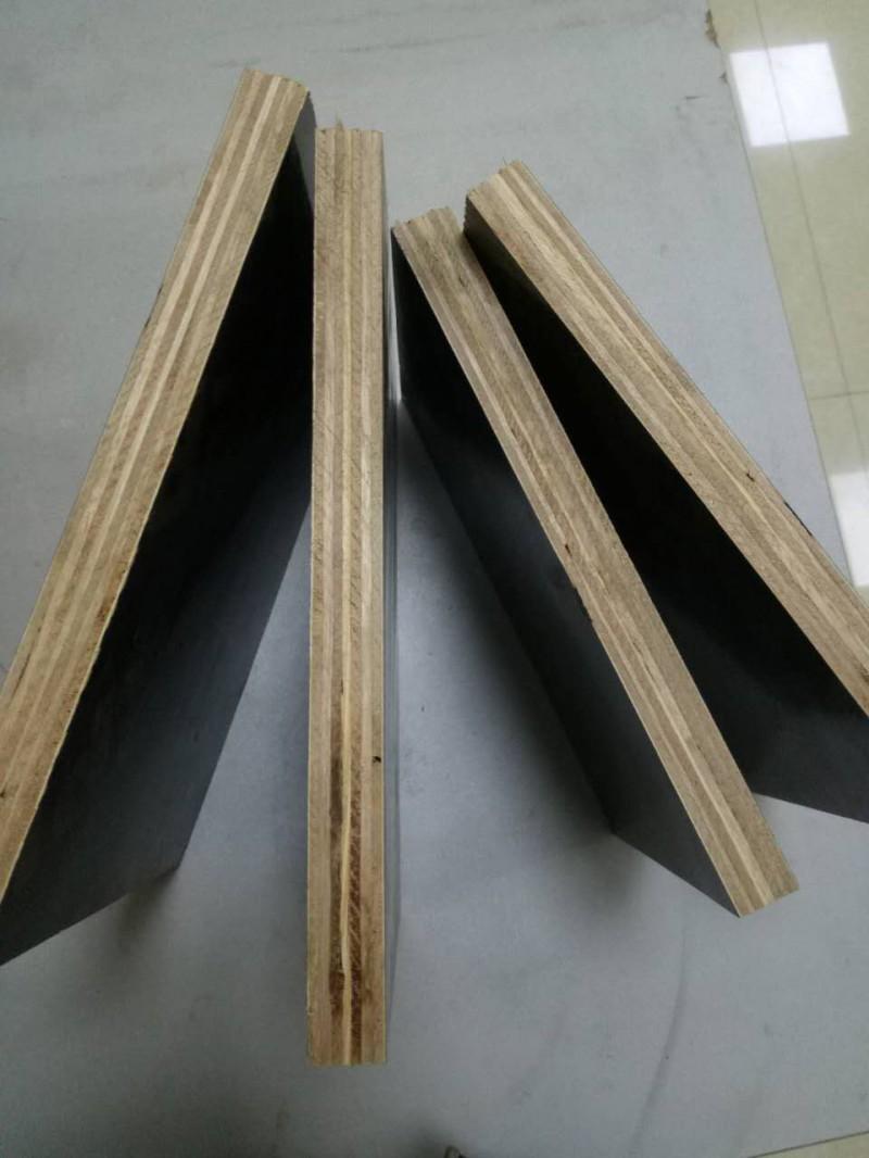 抗弯桉木防水型工程建筑模板 黑色覆膜建筑模板