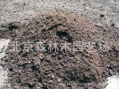 多屋顶绿化专用草炭土 量大从优 有机质达百分之50草炭土