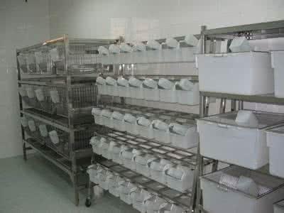洁净动物房工程