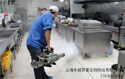 销售上海蚊蝇怎么灭厂家东诚供