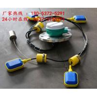 LS-S电缆浮球液位开关, 电缆浮球液位开关